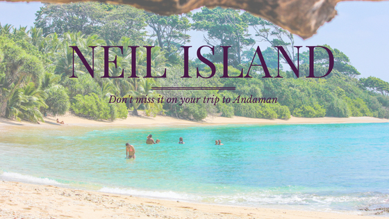 Neil Island - Don't miss it on your trip to Andaman!